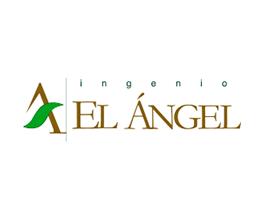 ingenio-el-anegel